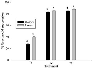 Co-vectoring of Beauveria bassiana and Clonostachys rosea by bumble bees (Bombus impatiens) for control of insect pests and suppression of grey mould in greenhouse tomato and sweet pepper